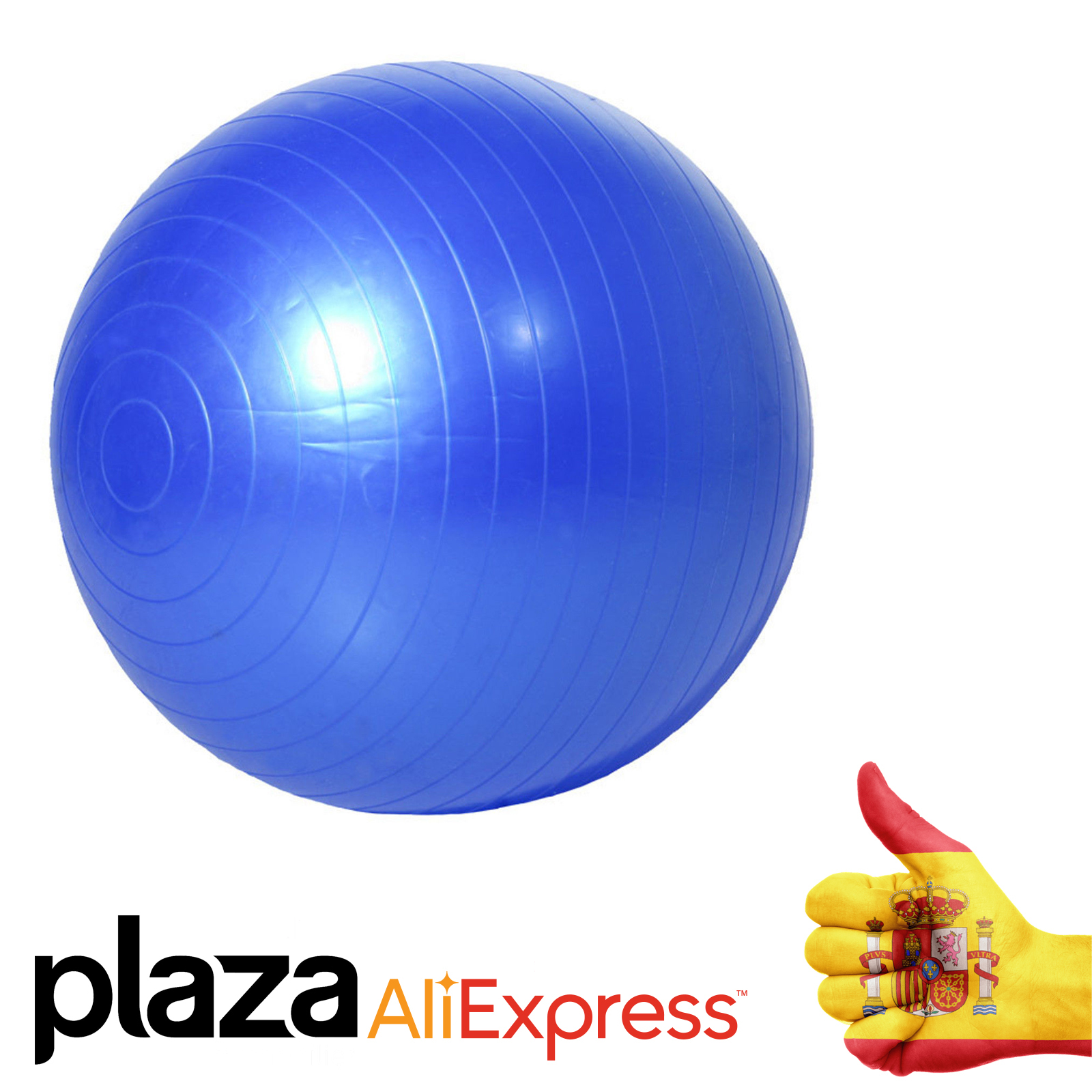 65cm Exercise Gym Yoga Swiss Ball Fitness Pregnancy Delivery Anti Explosion + Pump