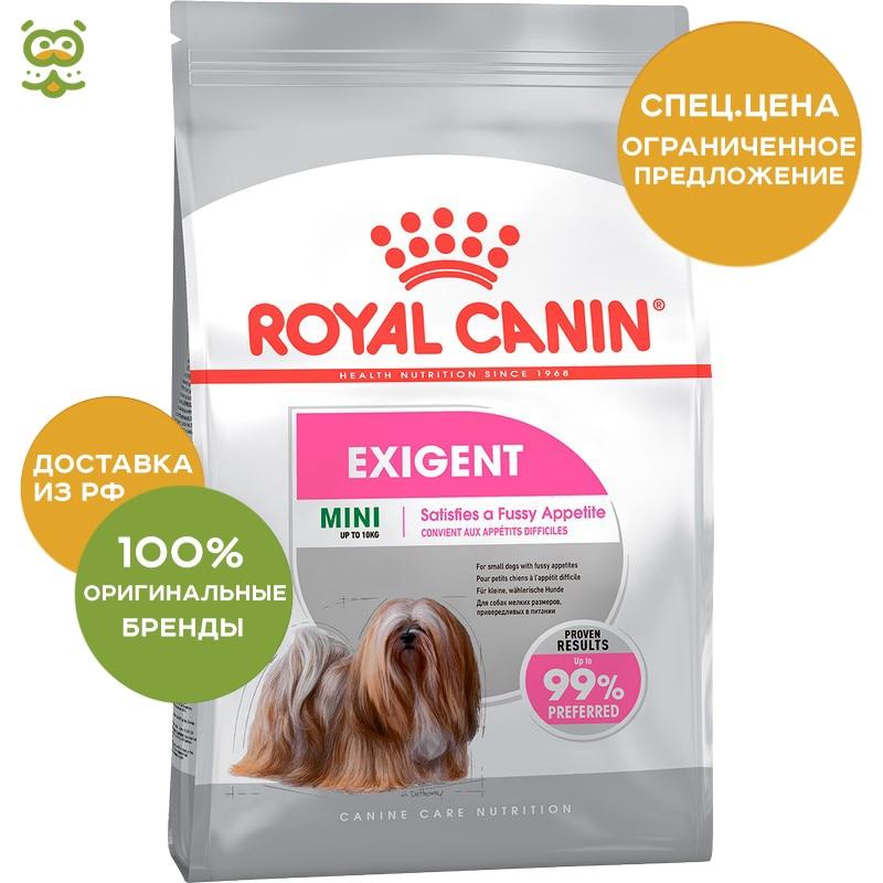Dog Food Royal Canin Mini Exigent, 3 kg explay explay для nokia 6101 n70