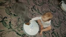 Good feeder, cat appreciated, thank you to the store