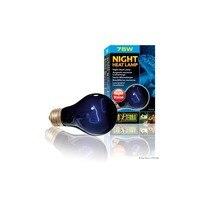 EXO TERRA Bombilla de Luz Azulada para Terrarios Night Heat (75 W)