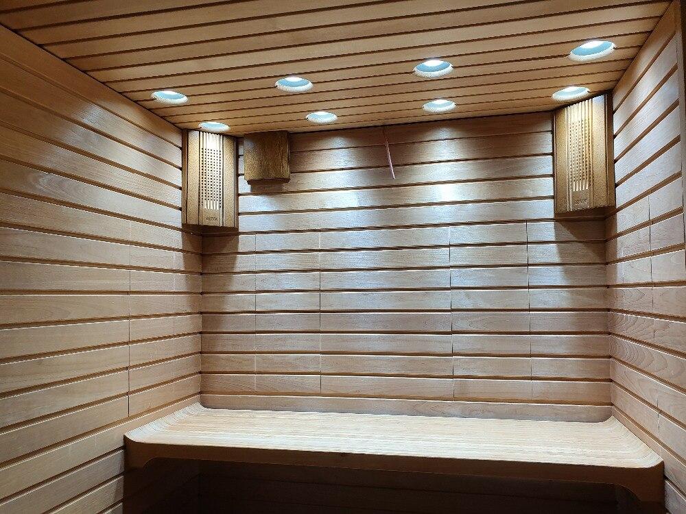 桑拿房100W-COB LED-1