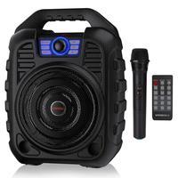 EARISE T26 Portable PA System Bluetooth Speaker & Wireless Microphone Karaoke Machine & FM Radio Audio Recording Remote Control