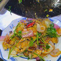 辣炒花蛤(花蚬子、花甲、蛤喇)的做法图解11