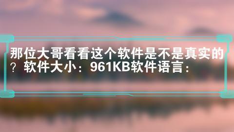 那位大哥看看这个软件是不是真实的?软件大小:961KB软件语言: