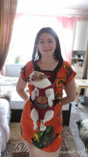 Small Dog Carrier | Puppy Backpack | Dog Front Carrier | Legs Out Front Pet Dog Carrier photo review