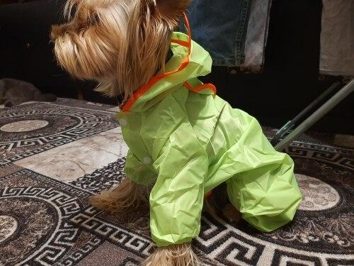 DogMEGA All-inclusive Colorful Raincoat for Dog | Dog Waterproof Raincoat photo review