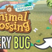 Animal Crossing New Horizons | All Bugs for your museum