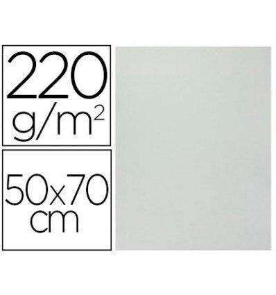 CARDBOARD SMOOTH/ROUGH 2 TEXTURES 50X70 CM 220G/M2 GRAY 20 Pcs