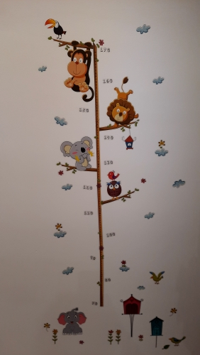 Height Measure Wall Sticker photo review