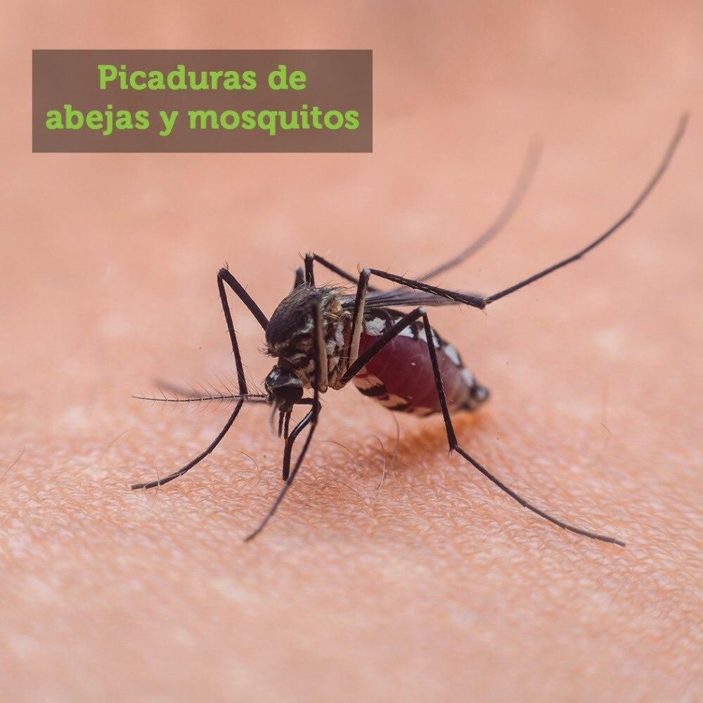 ACEITE ESENCIAL ARBOL DE TE REMEDIO NATURAL PICADURA MOSQUITOS Y ABEJAS