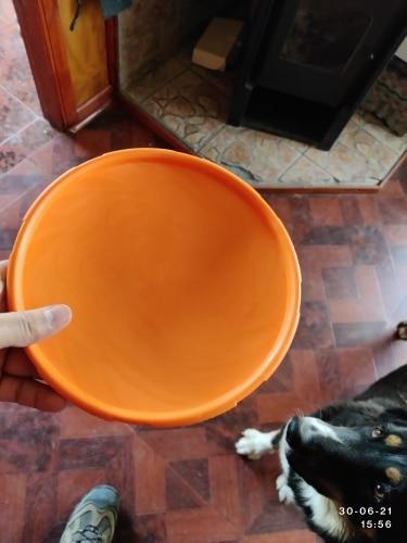 Interactive Dog Toys | Dog Ring Toy | Dog Training Toys photo review