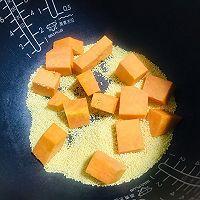 新年第一个菜谱~暖胃又甜蜜的南瓜小米粥的做法图解6