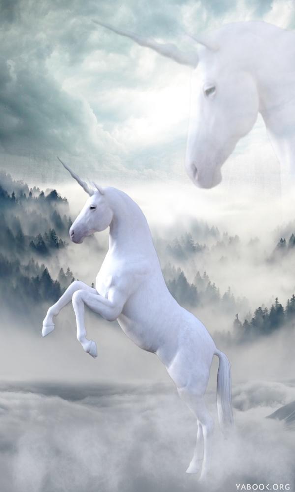《独角兽》封面图片