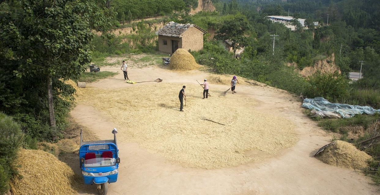 电动三轮车不能上路、不让进城,农产品何去何从?农民:上牌难插图(8)