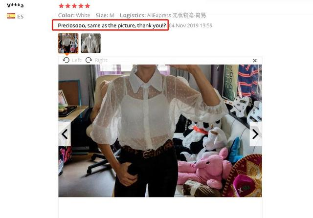 2019 Hot Sale White Transparent Sexy Women Hollow Sheer Mesh Puff Sleeve Blouse Lace Shirt Button Tops Perspective Female Shirt 10