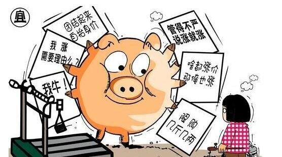 猪肉涨价带来哪些新的网赚商机