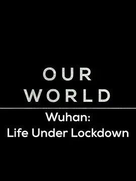 武汉:被封锁的生活