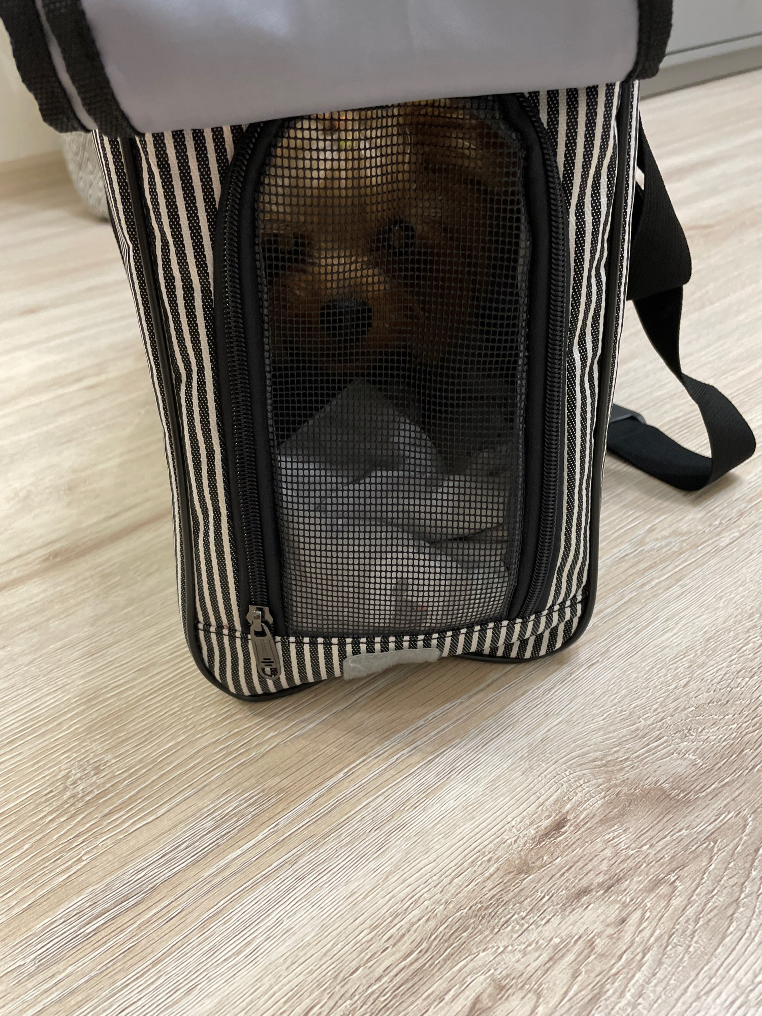DogMEGA Striped Dog Carrier Tote photo review