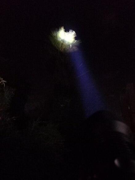 Lanternas Lanterna Tático Bateria