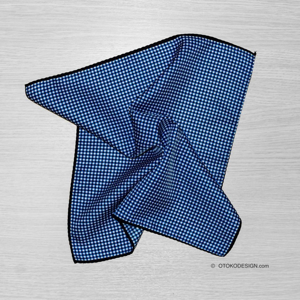 Shawl In A Pocket Of A Jacket In A Small Blue Cage (52371)