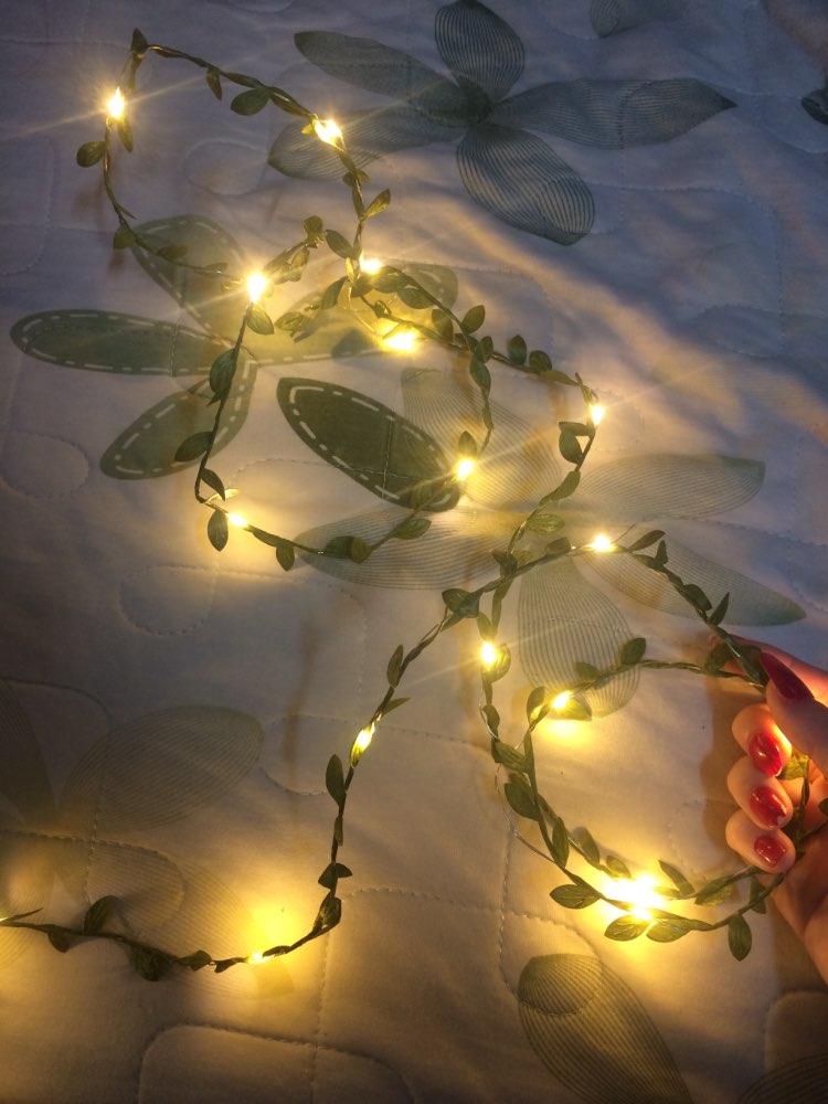 Fios de LED Decoração Decoração Pequenas