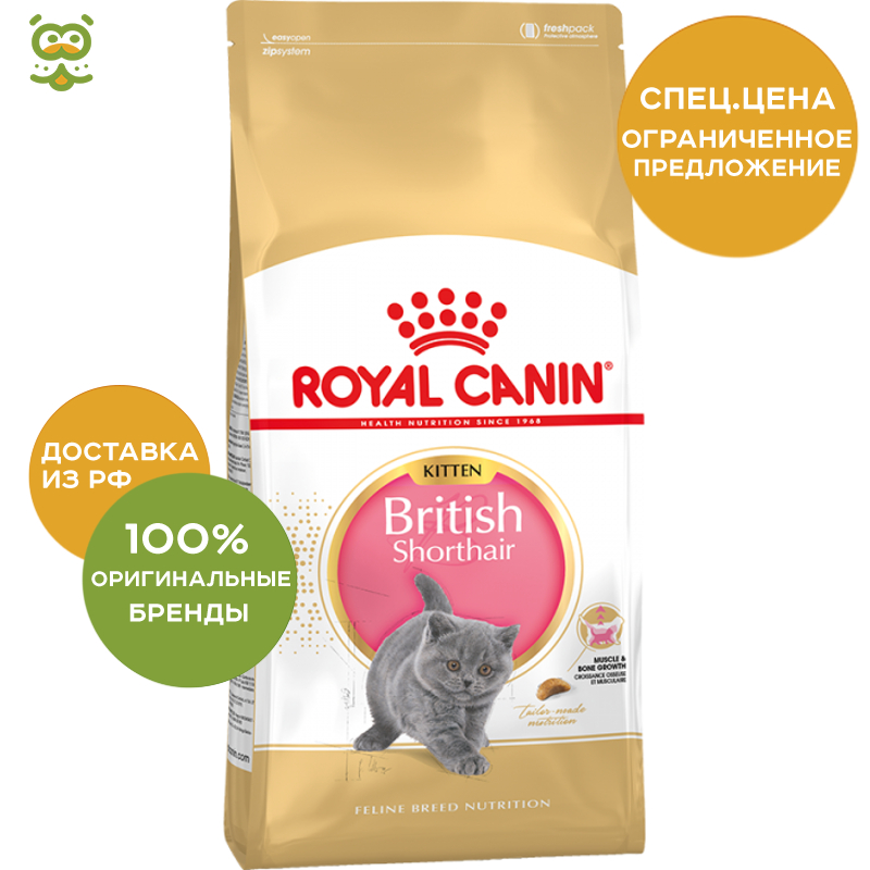 Food for kittens Royal Canin British Shorthair Kitten, 2 kg стоимость