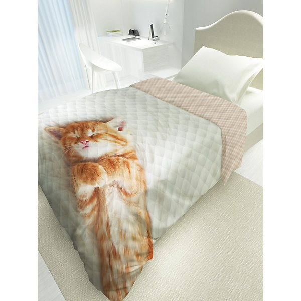 купить Bedspread with down 4 YOU Cute Kitten MTpromo по цене 2076 рублей
