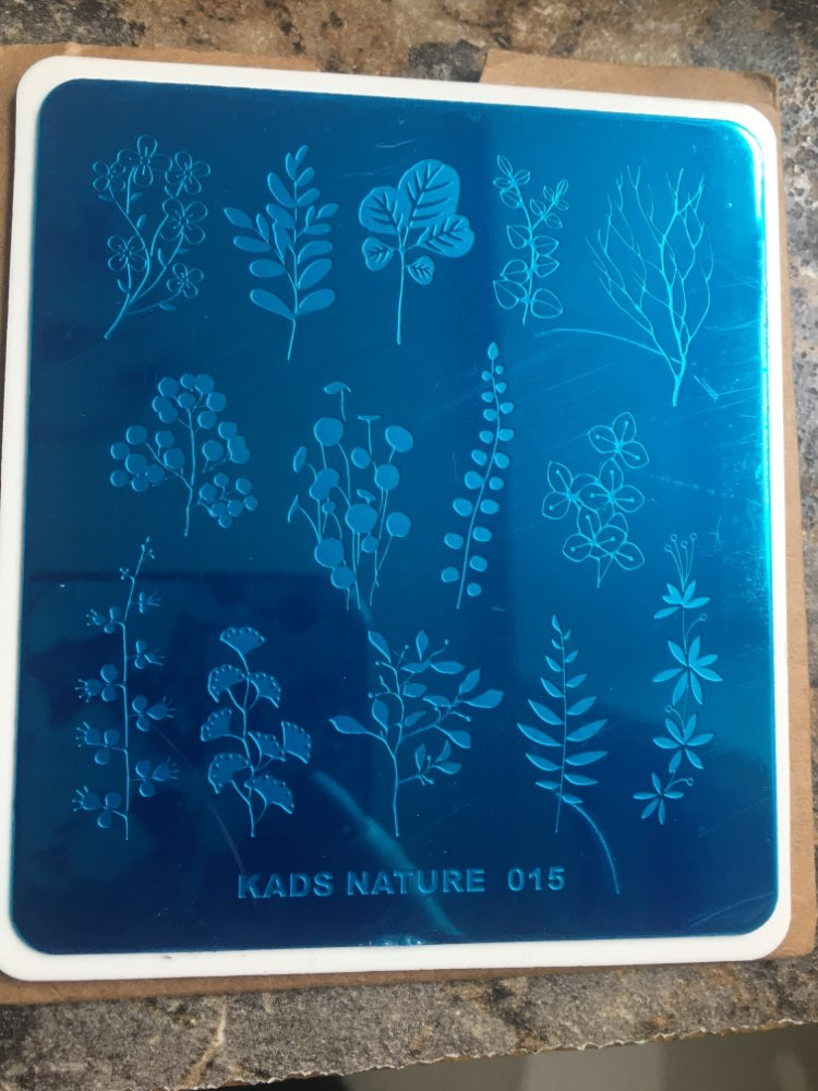 KADS Stamping Plate Nature 015 Leaves Plants Design Image Template Nail Stencil Templates Nail Mold Stencils for Nails reviews №2 93203