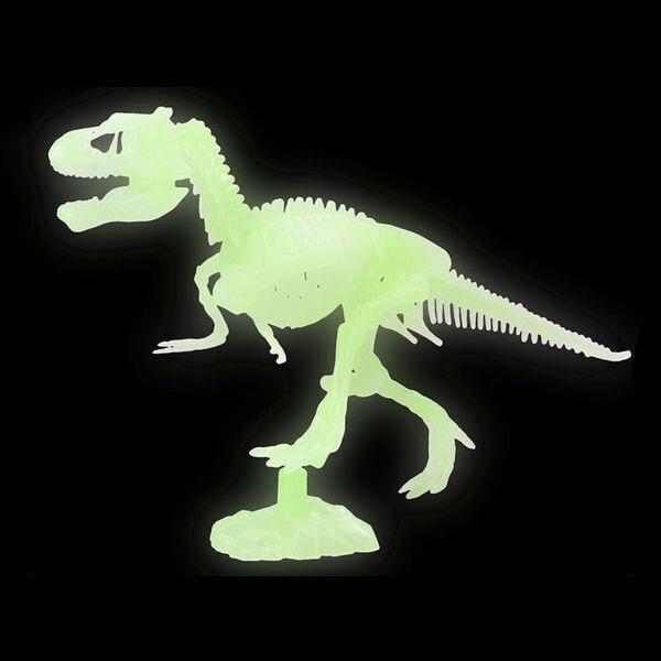 Skeleton Fluorescent 117287