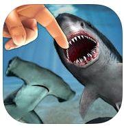 鲨鱼啃手指