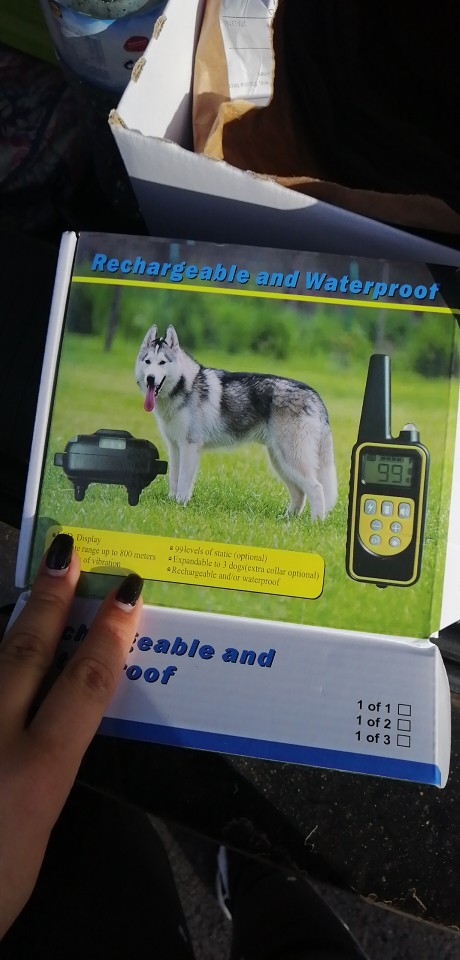 Dog Training Collars Pro | Shock Collar | E-Collar Training with LED photo review