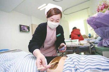 几种可以用来外敷治疗发热的中药-养生法典