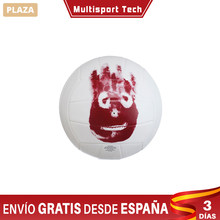 Balle m. Wilson Balon Volley film jeté Tom Hanks, compétition Volley-Ball balles, waterpolo & Volley-Ball canon plage