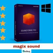 MAGIX Sound Forge Pro 14 édition-Télécharger ** Montage Audio