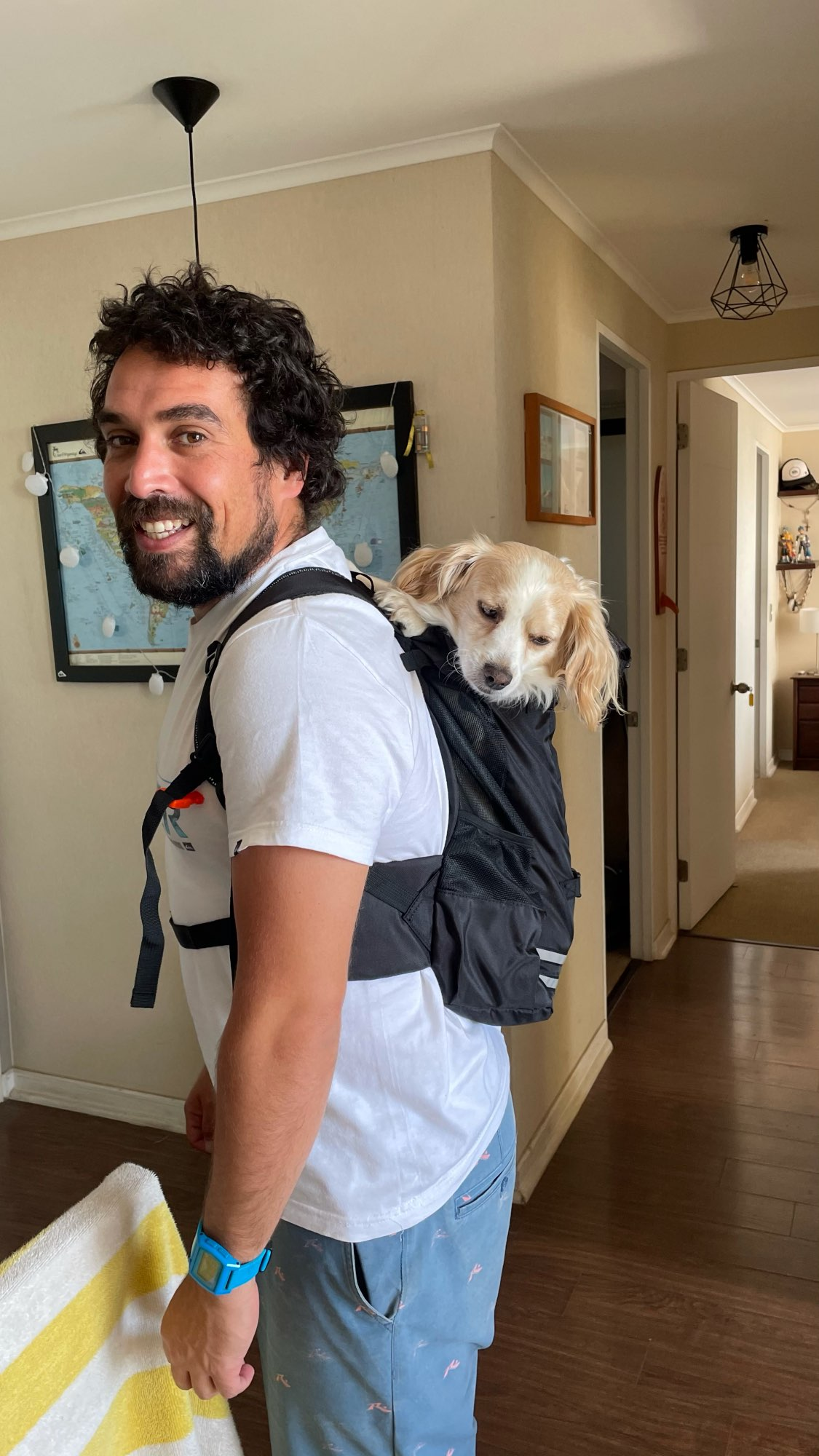 DogMEGADog Carrier Backpacks for Hands-Free Style photo review