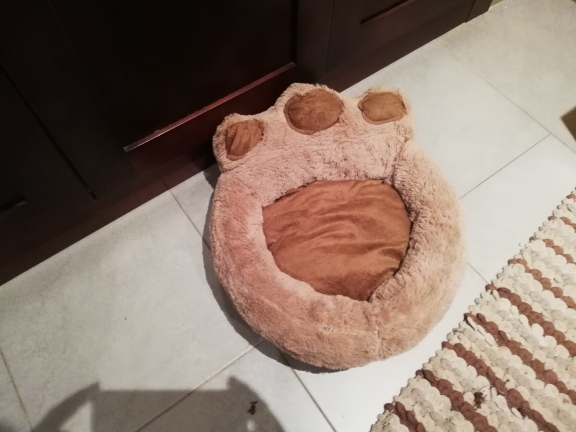 Paw Dog Bed | Cute Dog Beds | Warm Dog Bed photo review