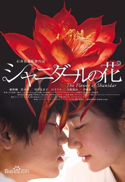 沙尼达尔之花海报