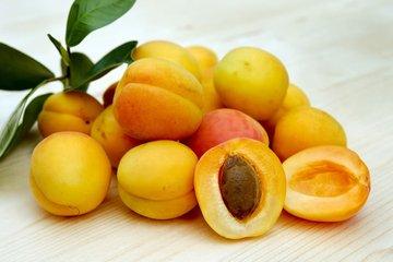 杏子为什么不能多吃 杏吃多的危害-养生法典
