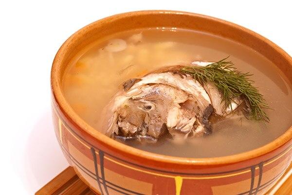 鲫鱼豆腐汤的作用与功效-养生法典