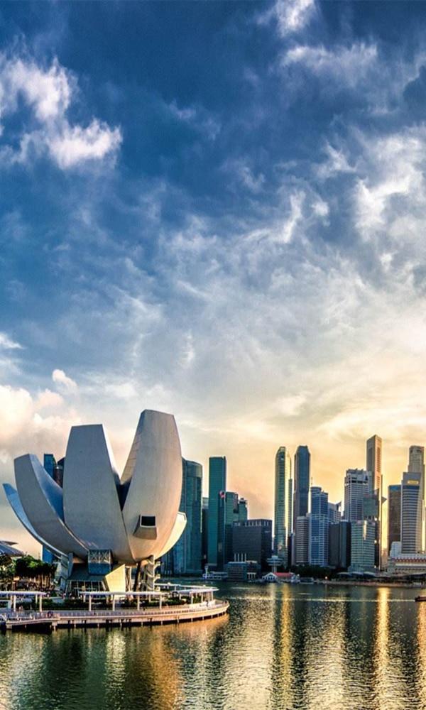 《新加坡》封面图片