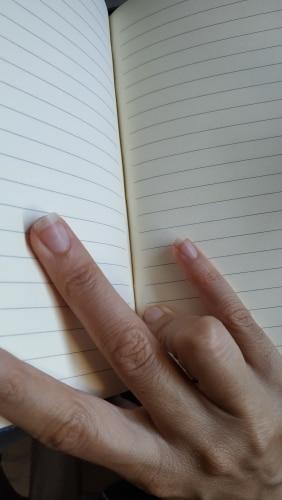 Cadernos Revista Escrita Escrita