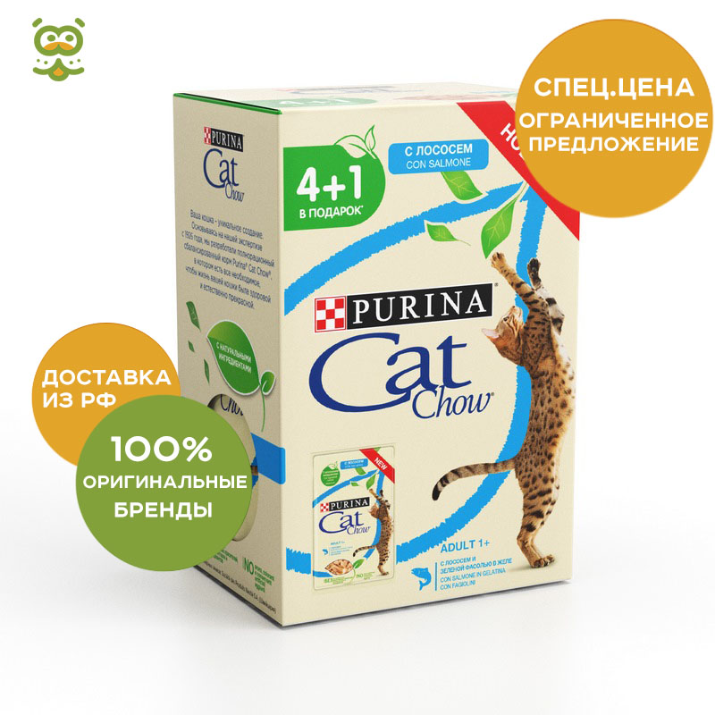 Cat wet food Cat Chow Adult spider for adult cats, jelly pieces (0.085 kg*5 pieces) cat food cat chow adult for adult cats duck 1 5 kg