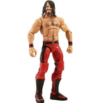 Seth Rollins Wrestling Figure Toy