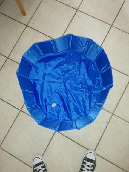 DogMEGA Foldable Dog Swimming Pool photo review