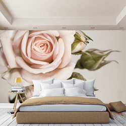 3D wall mural pink roses macro, wallpaper on the wall, for Hall, kitchen, bedroom, nursery, wall mural expanding space