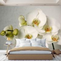 3D Photo Wallpaper wall paper Orchid flower, wallpaper custom, hall, kitchen, bedroom, children's, photo wallpaper enhance space