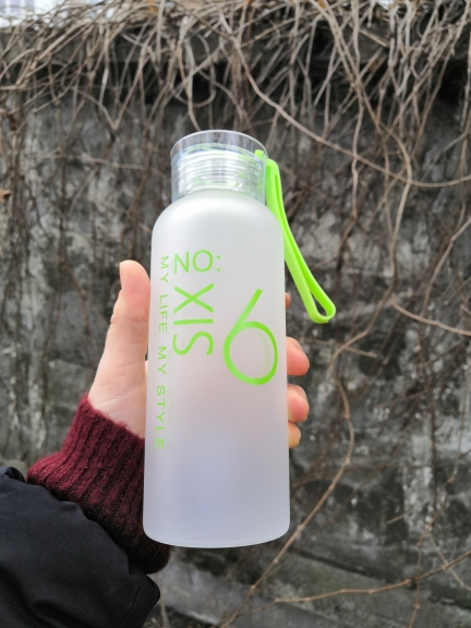 Baispo Frosted Glass Water bottle Healthy Water Container Summer Lemon Water Bottle Drink Bottles Outdoor Picnic home|Water Bottles| |  - AliExpress