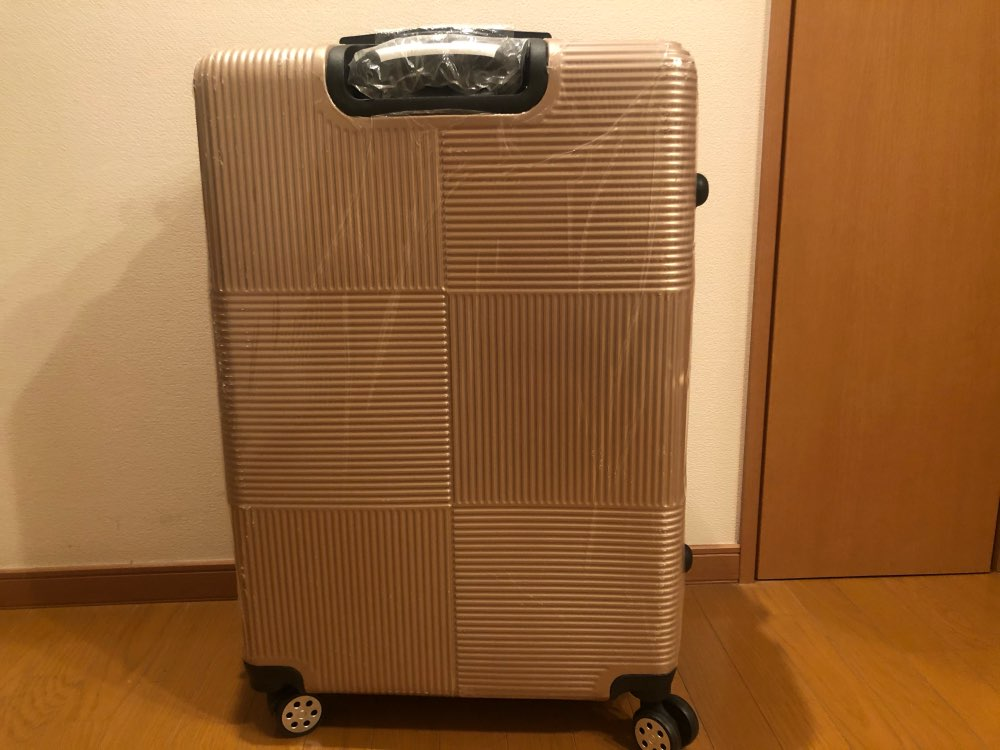 -- homens cabine carry-on