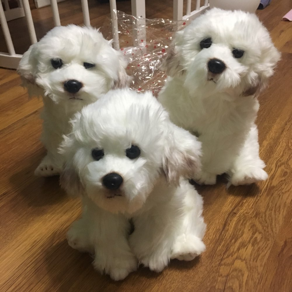 Bichon Frise Puppy Stuffed Animal Dog Plush Toy Cute Simulation Pets Fluffy Baby Dolls Birthday Gifts for Children Dropshipping