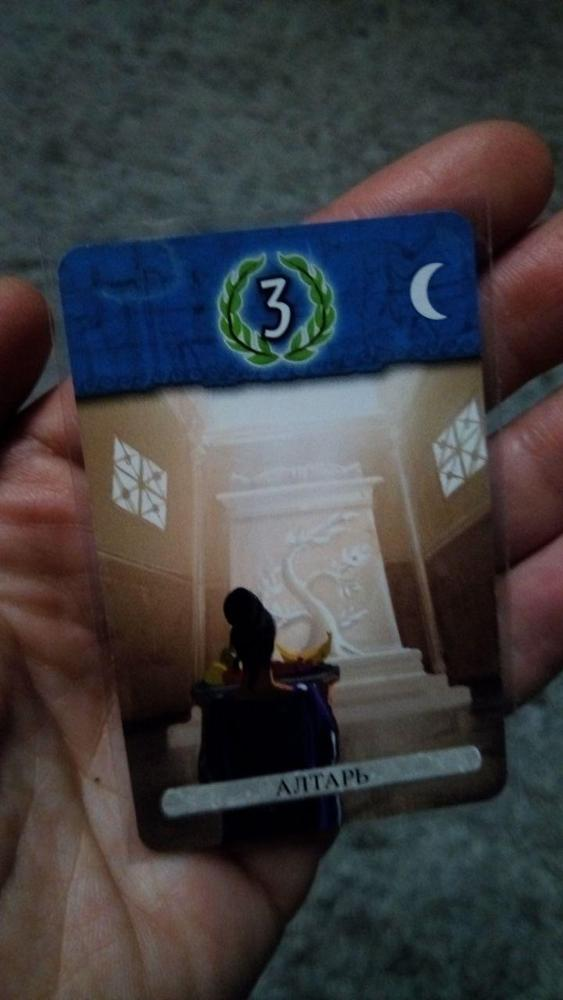 -- Protetor Proteção Cartões